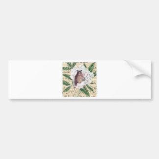 Owl French Bumper Sticker
