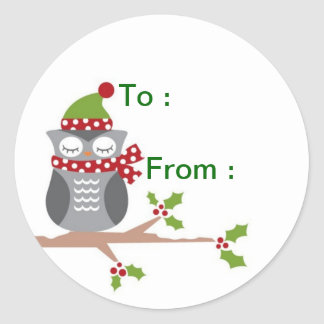 Owl gift label classic round sticker