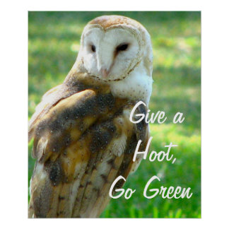 Owl Give A Hoot Poster