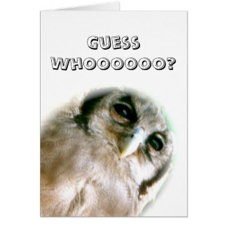 Owl Guess Who Card