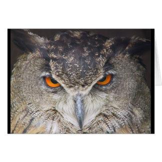 Owl head card