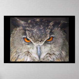 Owl head poster