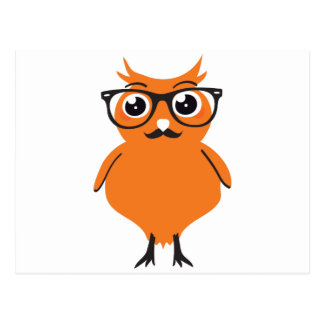 Owl Hipster with Glasses and Mustache Postcard