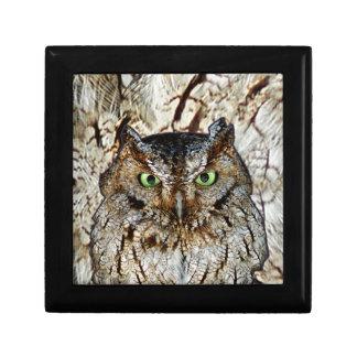 Owl Hoot Eyes Animal Bird Jewelry Boxes
