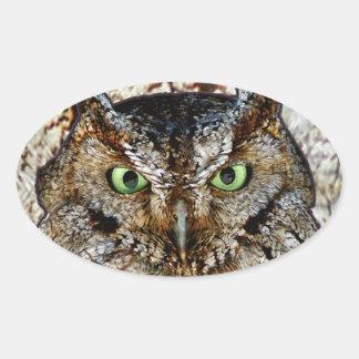 Owl Hoot Eyes Animal Bird Oval Sticker