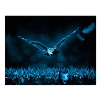 Owl Hunt Fantasy Night Postcard