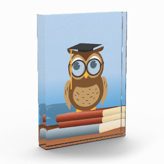 Owl illustration award