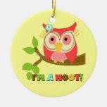 Owl I'm a Hoot Christmas Tree Ornament