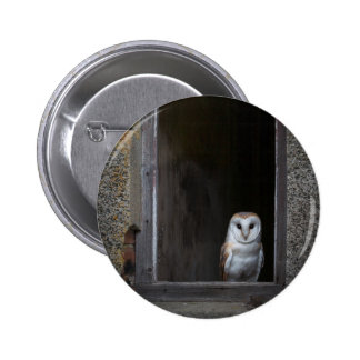 Owl In A Barn Pinback Button