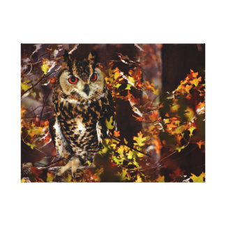 Owl in Autumn Canvas Print