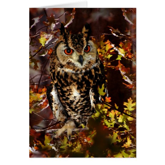 Owl in Autumn Card