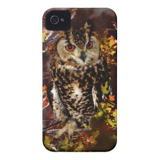 Owl in Autumn Case-Mate iPhone 4 Cases