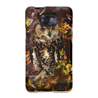 Owl in Autumn Galaxy SII Cover