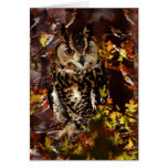 Owl in Autumn Greeting Card