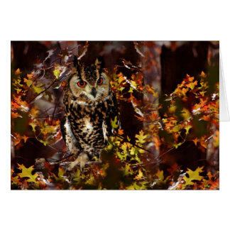 Owl in Autumn Greeting Cards