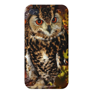 Owl in Autumn iPhone 4 Covers