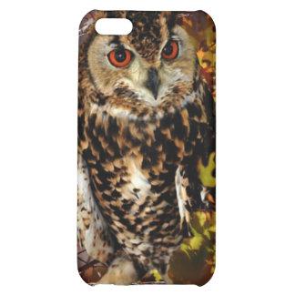 Owl in Autumn iPhone 5C Case
