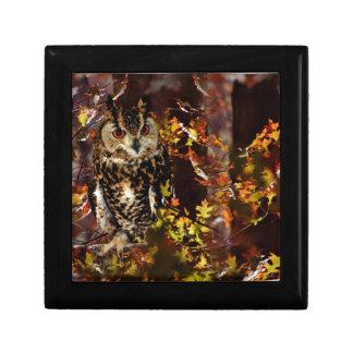 Owl in Autumn Keepsake Box