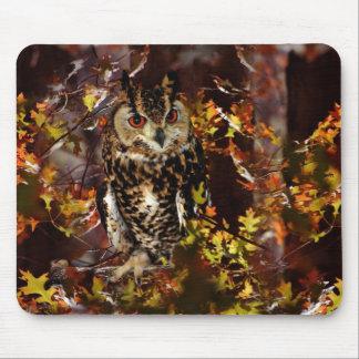 Owl in Autumn Mousepad