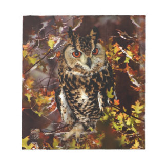 Owl in Autumn Notepads