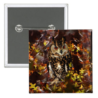Owl in Autumn Pins