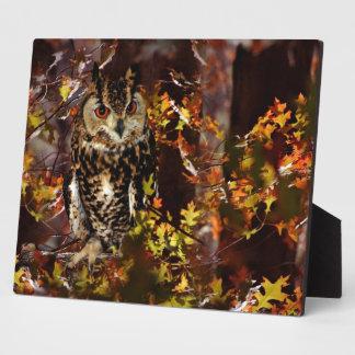 Owl in Autumn Plaque