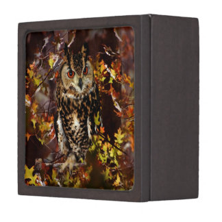 Owl in Autumn Premium Jewelry Boxes