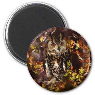 Owl in Autumn Refrigerator Magnet