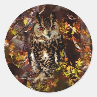 Owl in Autumn Round Sticker