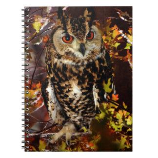 Owl in Autumn Spiral Notebook