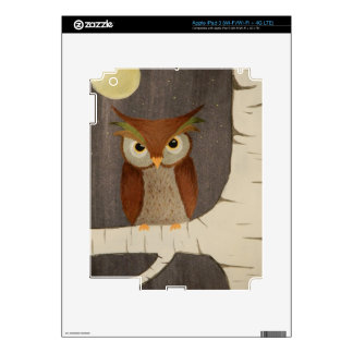 Owl in birch tree decal for iPad 3