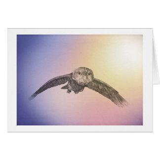 owl in flight card