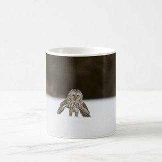 Owl in Snow Mug