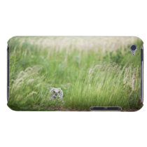 Owl In The Grass Barely There iPod Cover