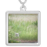 Owl In The Grass Silver Plated Necklace