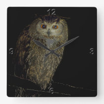 Owl in the Night Square Wall Clock
