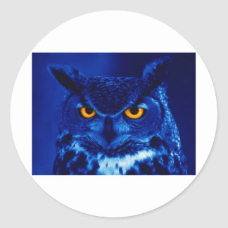 Owl In The Night Classic Round Sticker