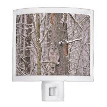 Owl In The Snow Night Light