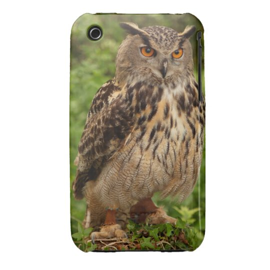 Owl iPhone 3 Case-Mate Barely There