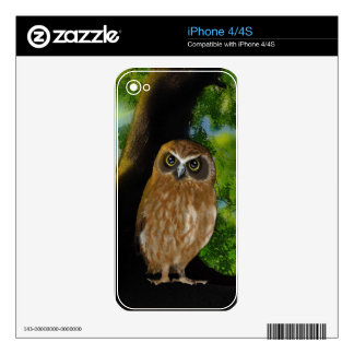 Owl iPhone 4S Decal