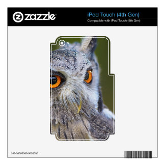 owl iPod touch 4G skins