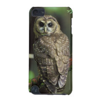 Owl iPod Touch 5G Case