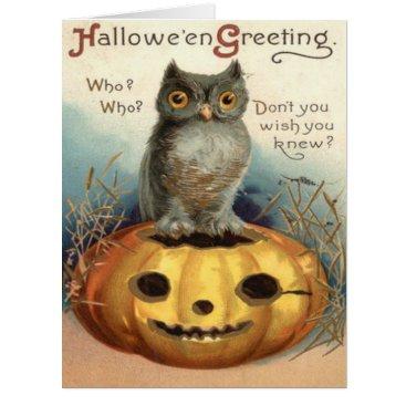 Halloween Themed Owl Jack O Lantern Pumpkin Card