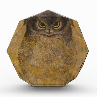 Owl Japanese Fine Art Award