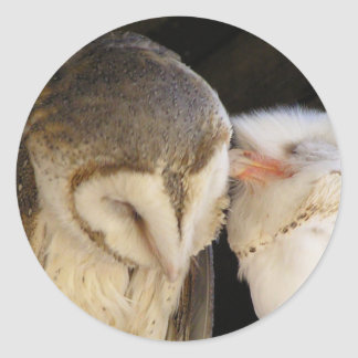 Owl Kisses! Classic Round Sticker
