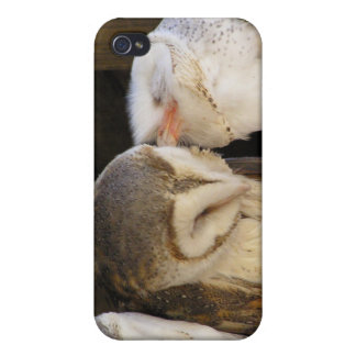 Owl kisses iPhone 4 covers