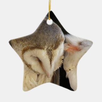Owl Kisses! Double-Sided Star Ceramic Christmas Ornament