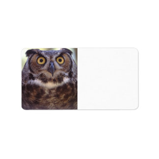 owl label