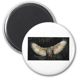 Owl Landing 2 Inch Round Magnet