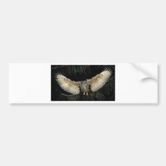 Owl Landing Bumper Sticker